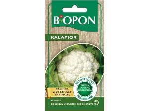 Nasiona Kalafior śnieżnobiały w sklepie Wasserman.eu