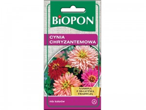 Zinnia chrysanthemum seeds mix colors 1g at Wasserman.eu