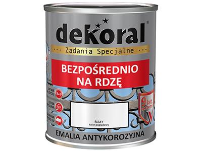 Anticorrosive paints w sklepie Wasserman.eu